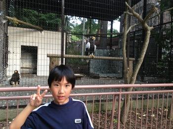 130816円山動物園4.jpg