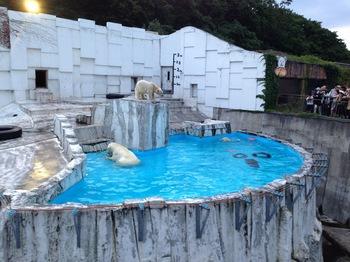 130816円山動物園6.jpg
